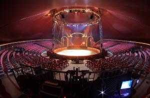 Strutture per il circo